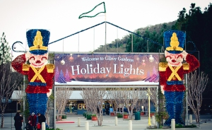 Gilroy-Gardens-H-Lights