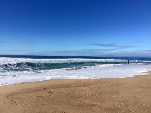 monterey_beaches2