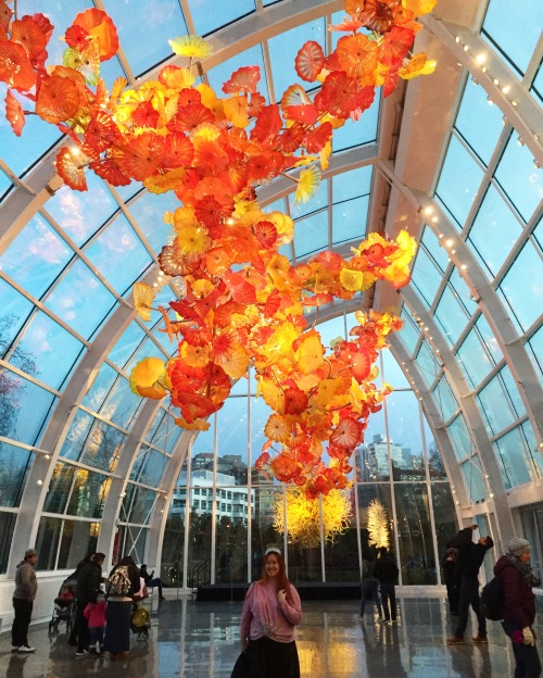 seattle-chihuly-glasshouse